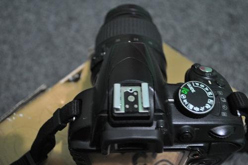 Nikon D3100  (4)